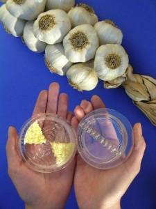 Garlic Twist - чесночница, о которой Вы мечтали!